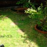 庭の暗渠排水工事後