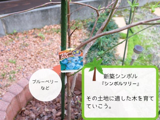 シンボルツリーは家シンボルの定番